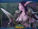 NightElf Cinematic 2